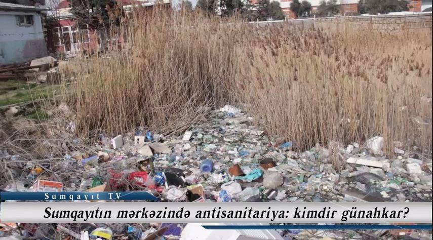 Sumqayıtın mərkəzində antisanitariya: kimdir günahkar?  - VİDEO