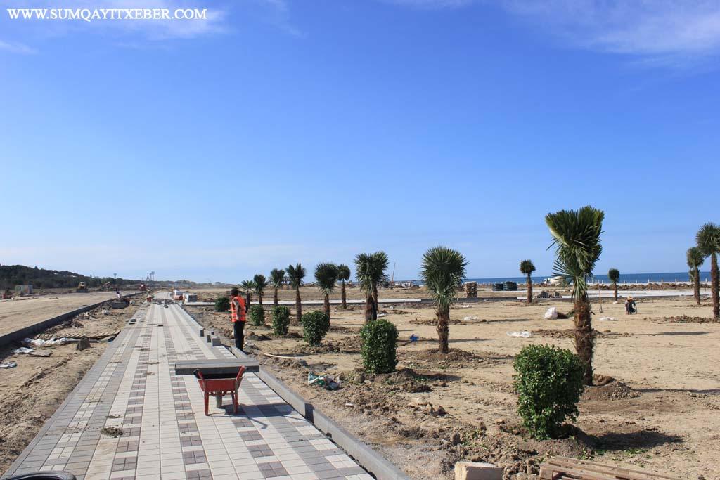 Sumqayıtda velosiped yolu salınır – FOTOLAR