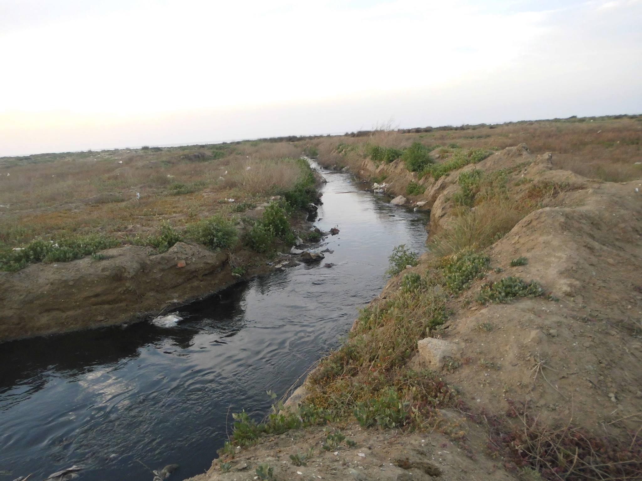 Bura Xəzər dənizinin Sumqayıt sahilləridir - Kanalizasiya suları birbaşa dənizə axır - FOTOLAR